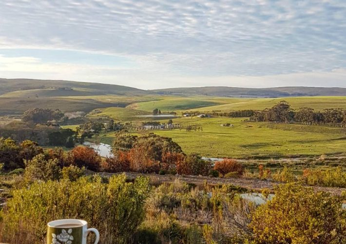 Unwind and Relax at Phillipskop Mountain Reserve…